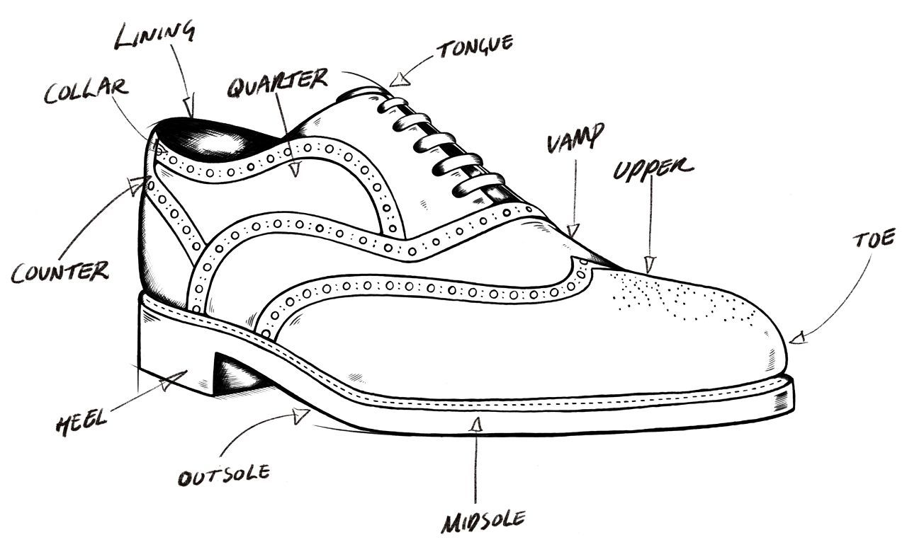anatomy of a shoe